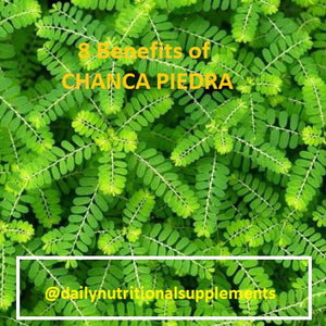 Chanca Piedra Benefits and Solutions for a healthy life.