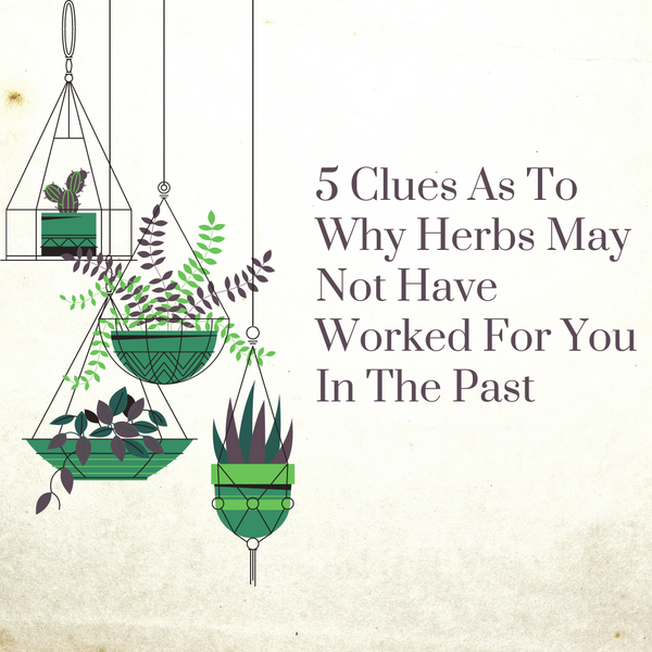 5 Clues As To Why Herbs May Not Have Worked For You In The Past