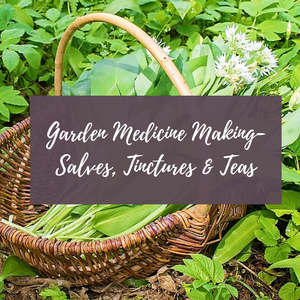 Garden Medicine Making - Salves, Tinctures & Teas (August 22, 2019)