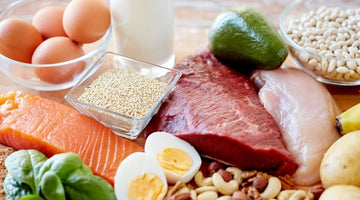 Why is protein important?