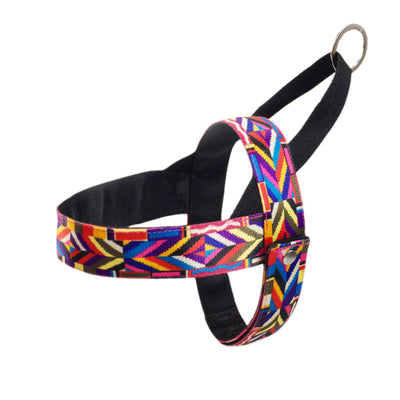 Rainbow Dog Harness & Leash - Updated! harness 04 / XS - Equally Younique LGBTQ Shop