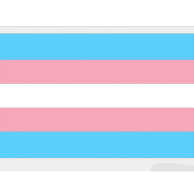 """Transgender"" Pride Flag  - Equally Younique LGBTQ Shop"