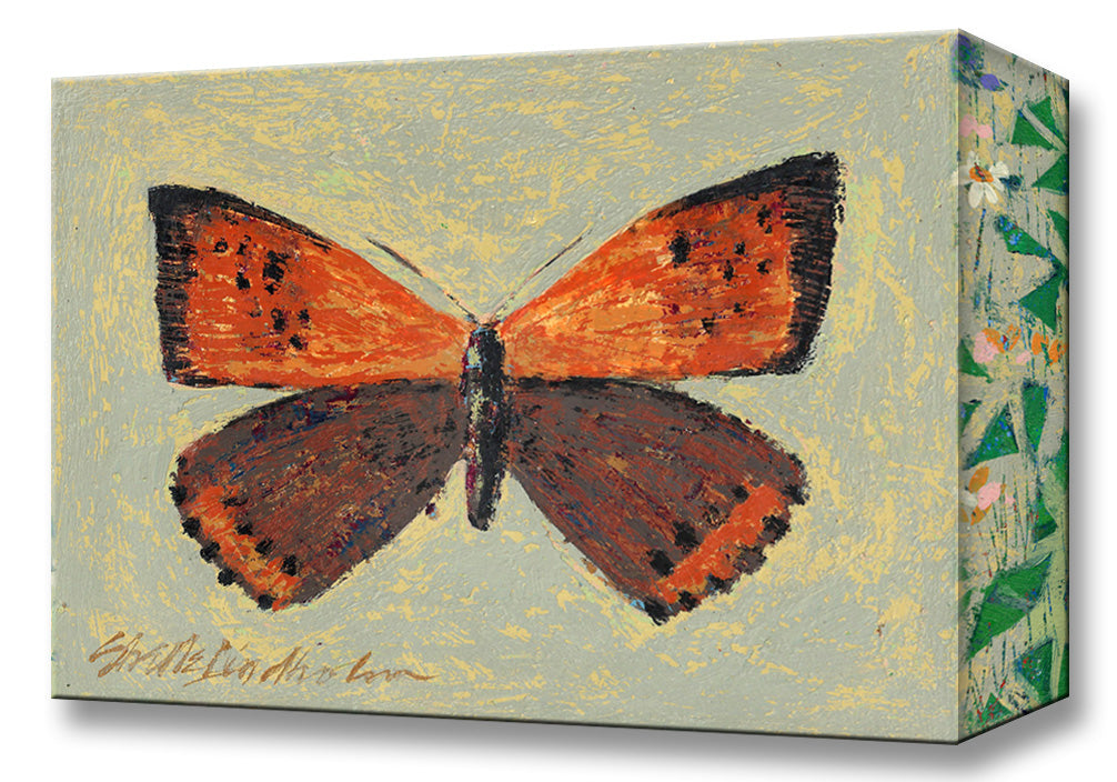 American Copper Butterfly:  Metal 18x26 Inches