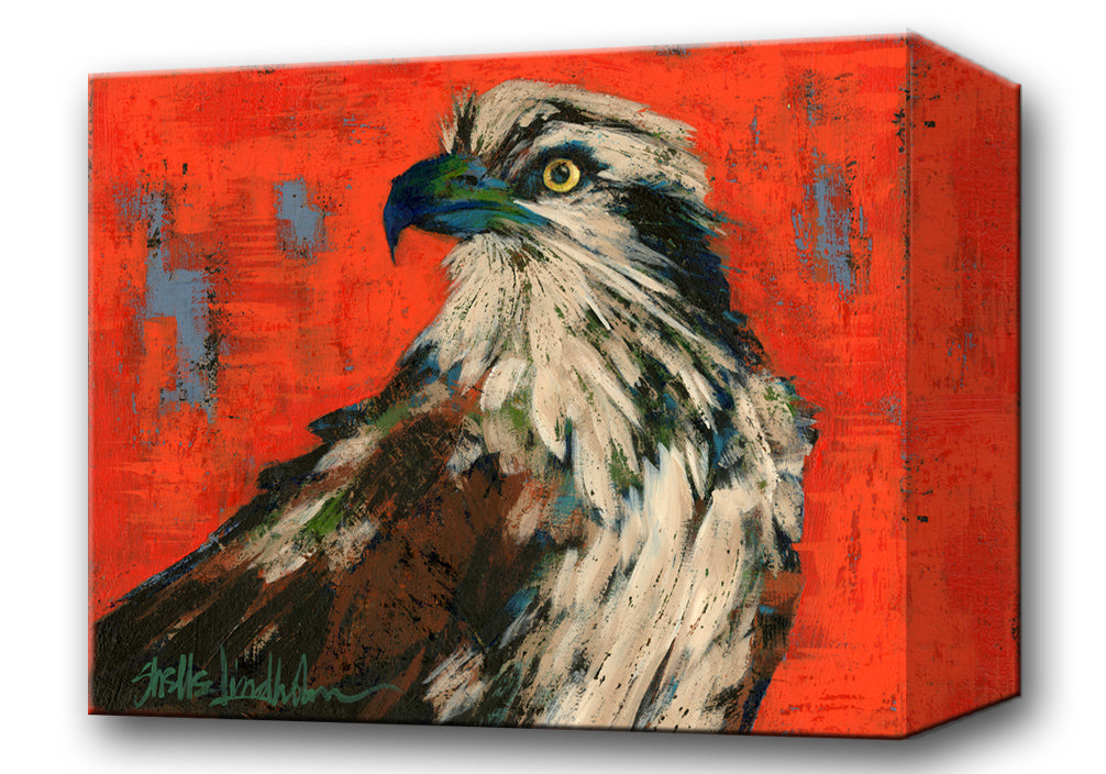 Osprey:  Metal 18x26 Inches