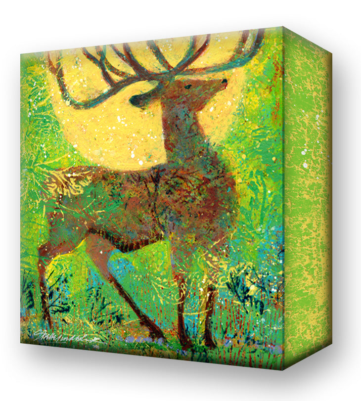 Summer Elk:  Metal 18x18 Inches