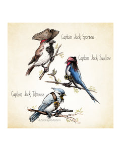 Birds of the Caribbean