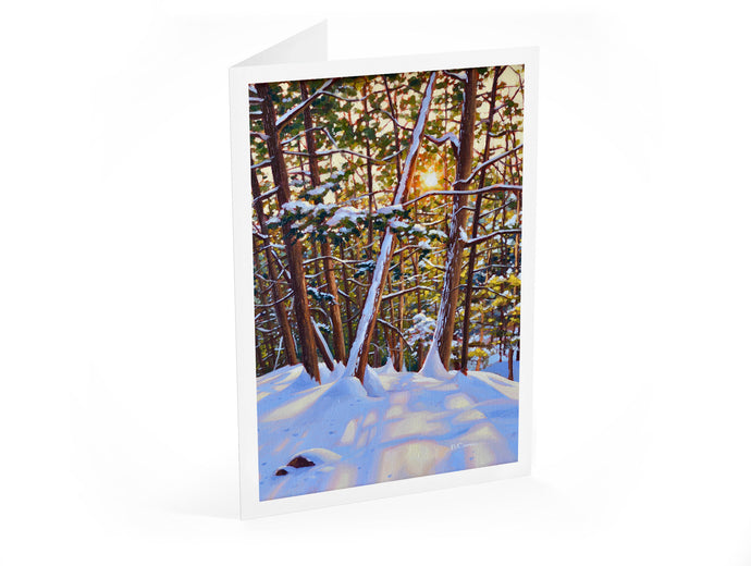 12-Card Holiday Package