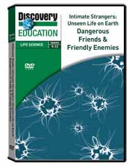 Intimate Strangers: Unseen Life on Earth - Dangerous Friends  and  Friendly Enemies DVD