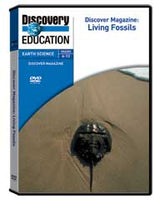 Discover Magazine: Living Fossils DVD