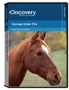 Secrets of the Arsenal: Courage Under Fire DVD