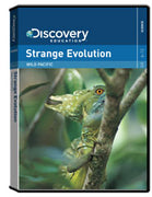 Wild Pacific: Strange Evolution DVD