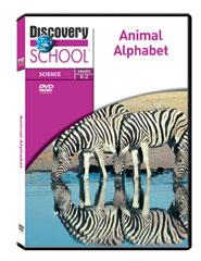 Animal Alphabet DVD