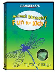 Animal Discovery Fun for Kids: Big-Winged Things DVD