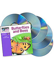 Butterflies  and  Bees 5-Pack CD-ROM