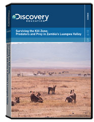 Surviving the Kill Zone: Predators and Prey in Zambia's Luangwa Valley DVD