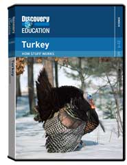 How Stuff Works: Turkey DVD
