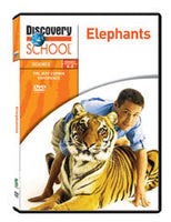 Jeff Corwin Experience: Elephants DVD
