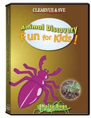 Animal Discovery Fun for Kids: Noisy Bugs DVD