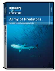 Nature's Most Amazing Events: Army of Predators DVD