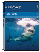 Sharkzilla DVD