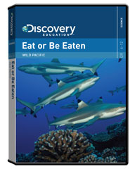 Wild Pacific: Eat or Be Eaten DVD