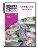 Animals and Numbers DVD