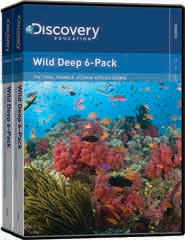 Wild Deep  6-Pack DVD