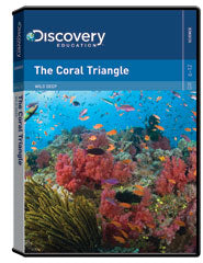 Wild Deep: The Coral Triangle DVD