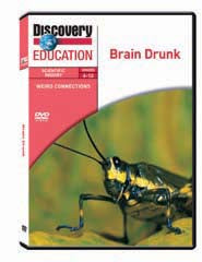Weird Connections: Brain Drunk DVD