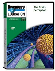 Brain: Perception DVD