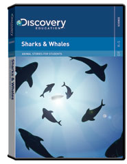 Animal Stories for Students: Sharks  and  Whales DVD