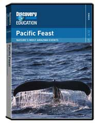 Nature's Most Amazing Events: Pacific Feast DVD