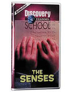 The Senses DVD