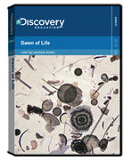 How the Universe Works: Dawn of Life DVD