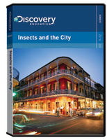 Insects and the City DVD