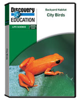 Backyard Habitat: City Birds DVD