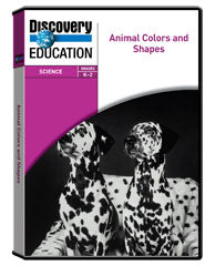 Animal Colors and Shapes DVD