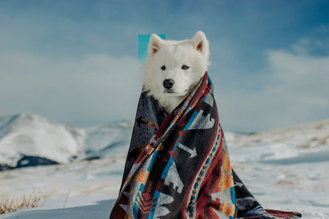 KENAI - Human Throw Blanket