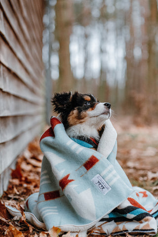 OZARK - Pet Sleeper Blanket with RuffTrek Sherpa