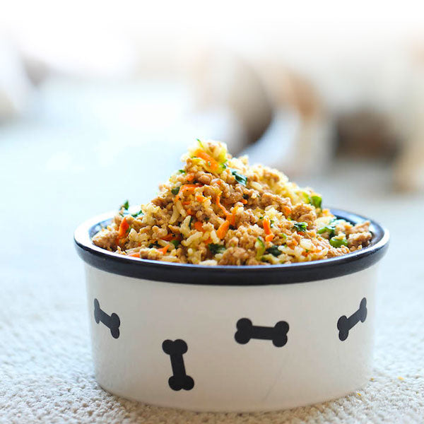 Healthy Dog Food Recipe