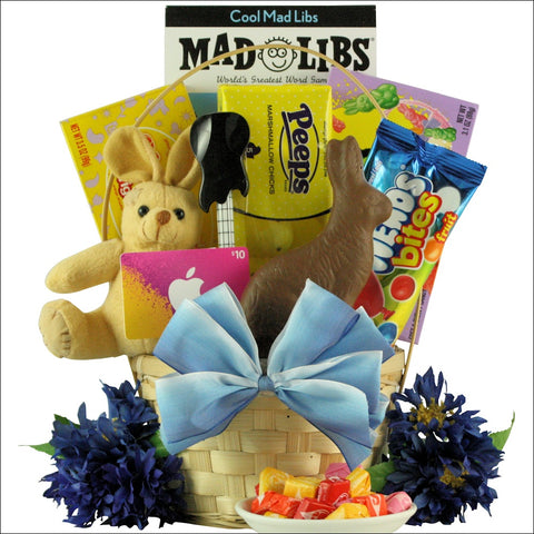 COOL GUY: EASTER GIFT BASKET TWEEN BOYS AGES 10 TO 13 YEARS OLD