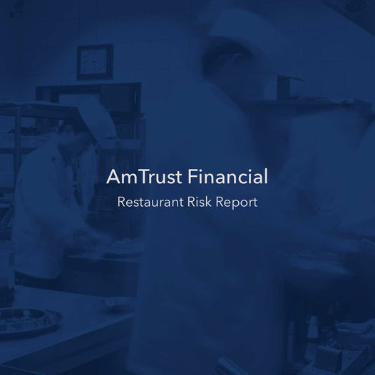Amtrust Statistics Report