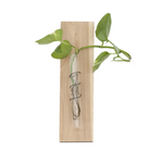 Test Tube Vase Wall Hanger | Savvie Studio