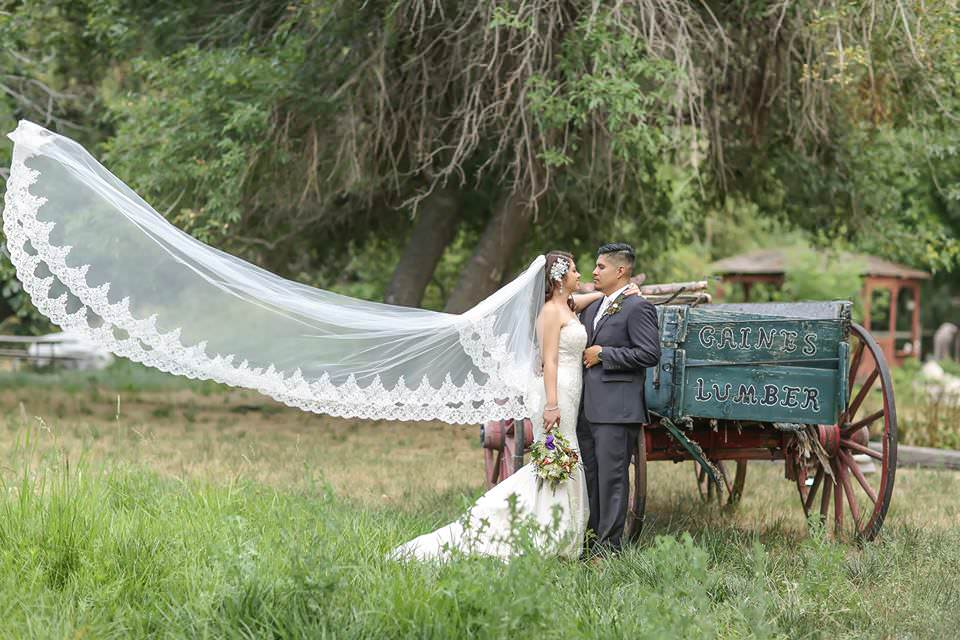 extra long royal length lace trimmed veil for rustic outdoor wedding