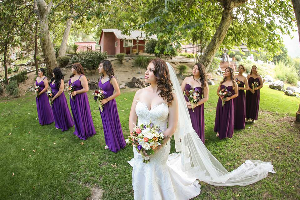long cathedral drop wedding veil for royal purple wedding