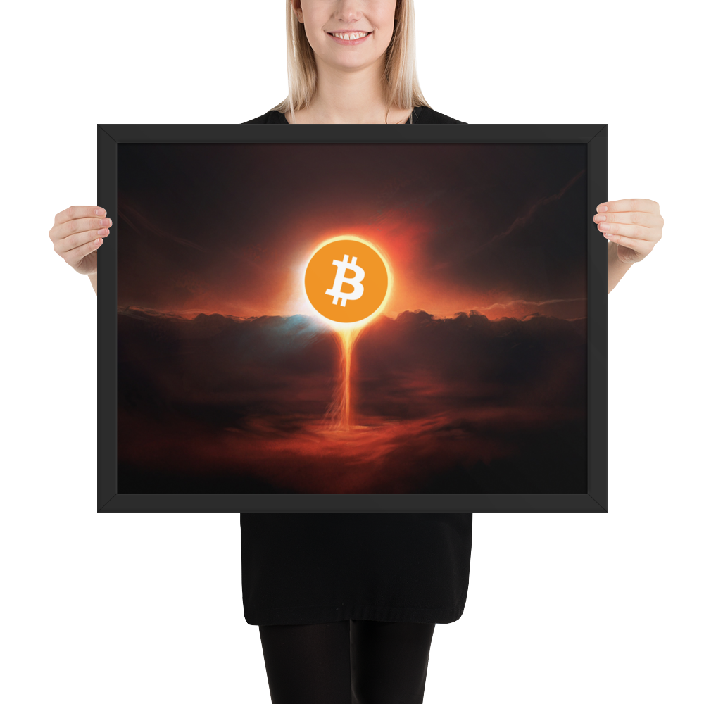 Framed Doomsday Bitcoin Poster