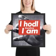Framed I Hodl therefore I am Poster