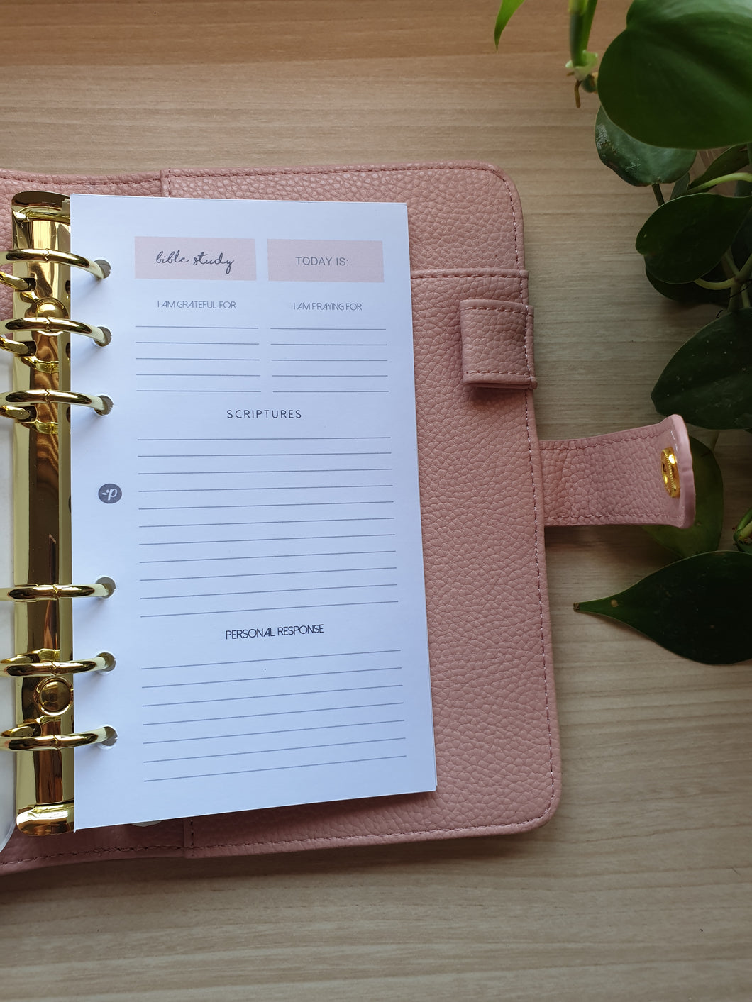Blush Bible Study Planner Refill for Kikki.K Kate Spade Filofax and other Planners