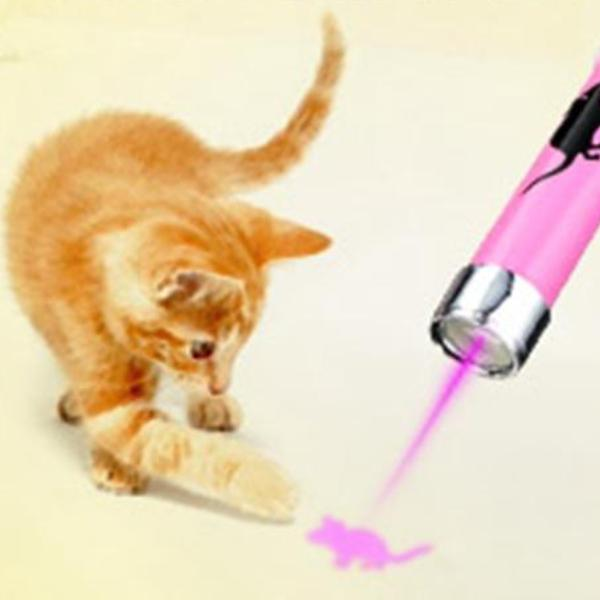 LED Laser Pointer With Animation Mouse for Pet Cat