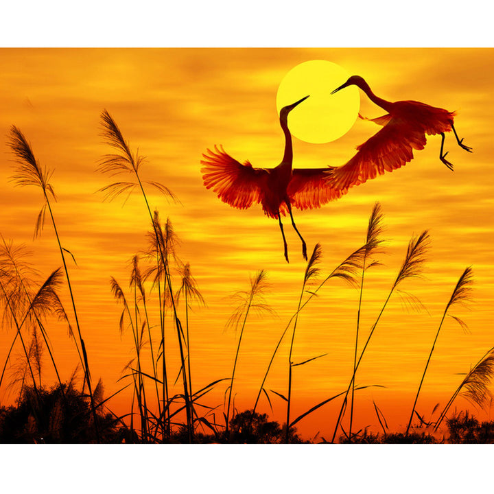 Sunset Crane Bird DIY Acrylic Paint By Numbers Kit 40x50cm